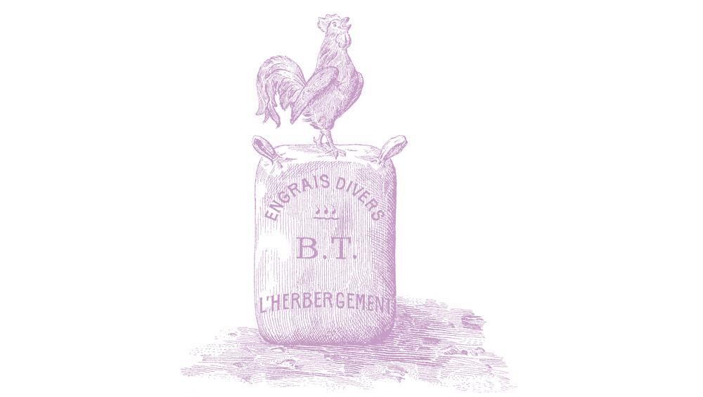 histoire-1907-3